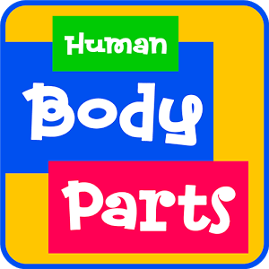 Learn Human Body Parts